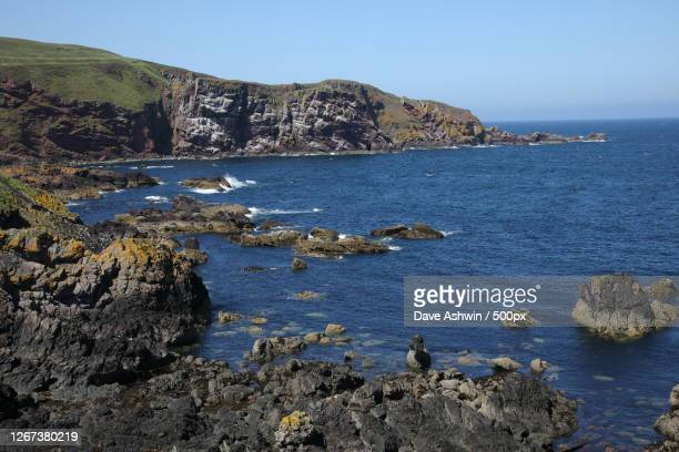 coast with rock formations, eyemouth, united kingdom - dave ashwin stock pictures, royalty-free photos & images