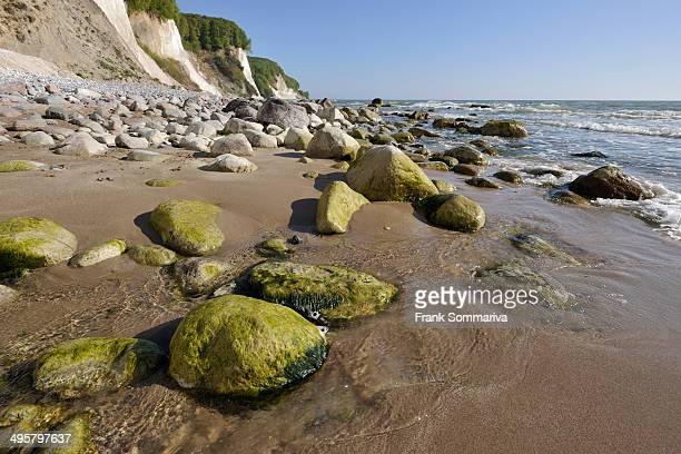 Coastal cliffs, shingle beach and chalk cliffs, UNESCO World Natural Heritage Site, Jasmund National Park, Rugen, Mecklenburg-Western Pomerania, Germany