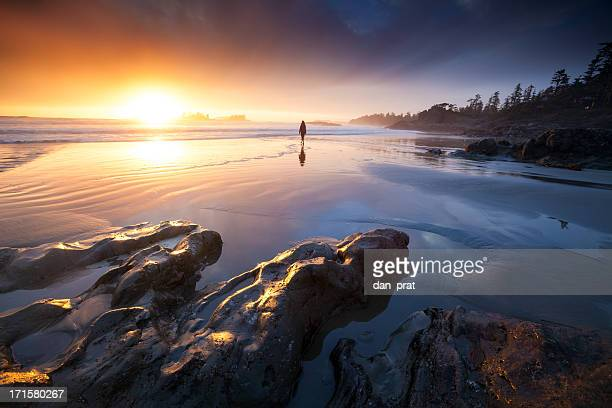coastal dream - vancouver island stockfoto's en -beelden