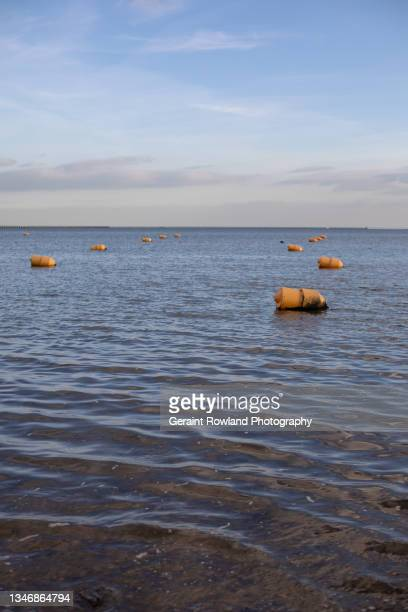 coastal images from the south east of england - southend on sea stock pictures, royalty-free photos & images