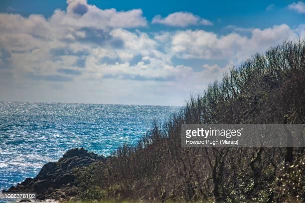 Coastal Island Landscapes