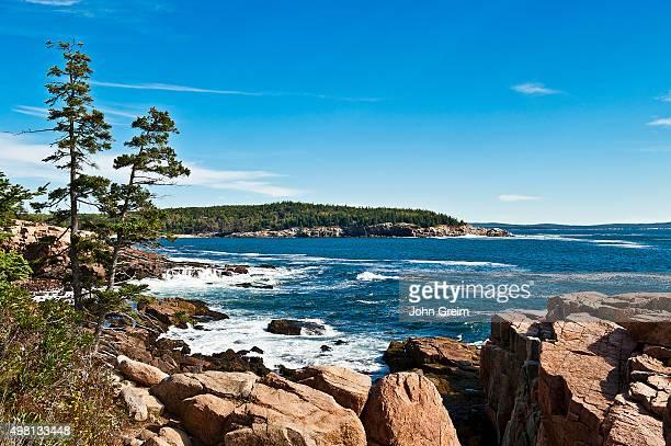 Coastal landscape along Ocean Drive