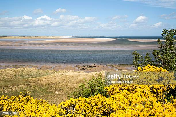 30 Top Budle Bay Pictures, Photos and Images - Getty Images