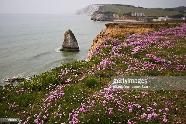 coastal landscape - s0ulsurfing stock-fotos und bilder
