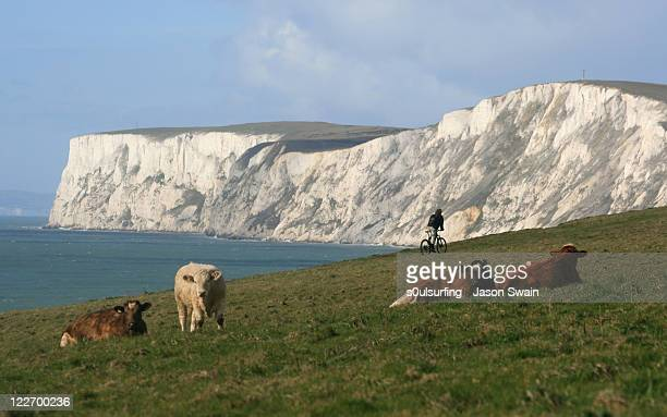 coastal landscape - compton bay isle of wight stock pictures, royalty-free photos & images