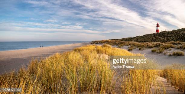 Coastal Landscape, Sylt Island, Germany, Europe