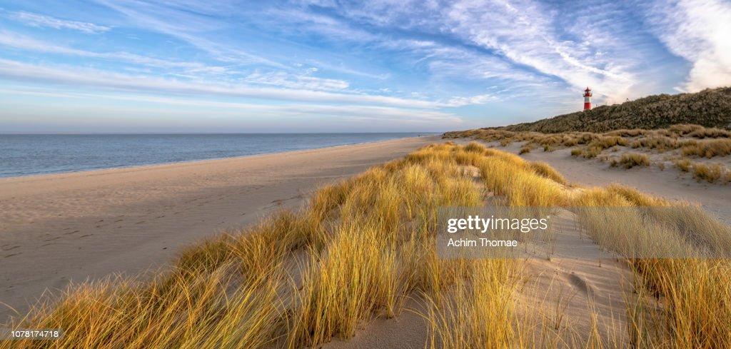 Coastal Landscape, Sylt Island, Germany, Europe : Stock Photo