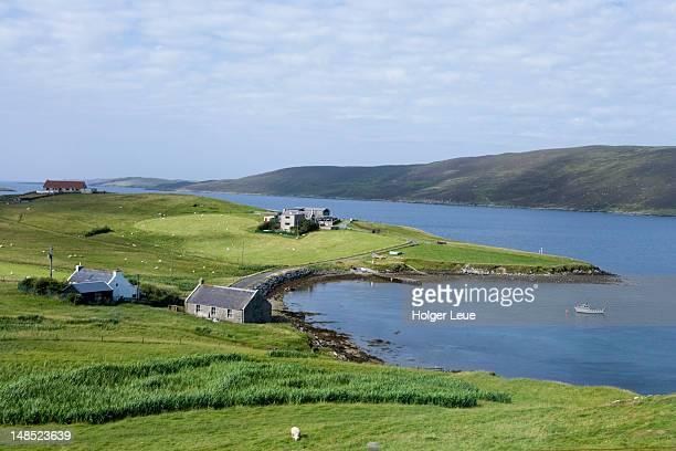 coastal living. - isole shetland foto e immagini stock
