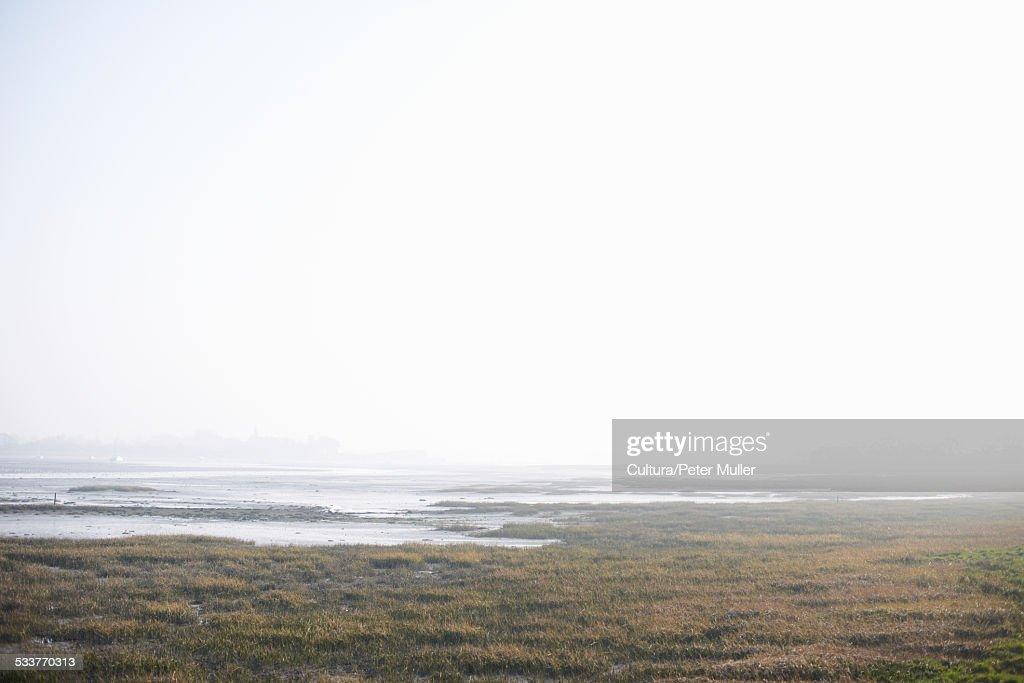Coastal marshes in morning mist : Foto stock
