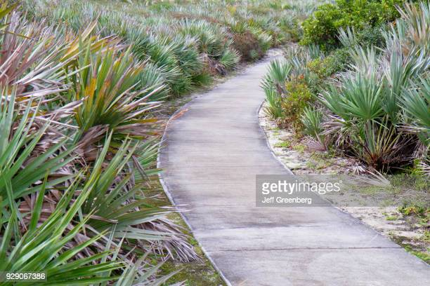 Coastal nature trail through Loggerhead Park.