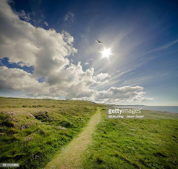 coastal path - s0ulsurfing stockfoto's en -beelden
