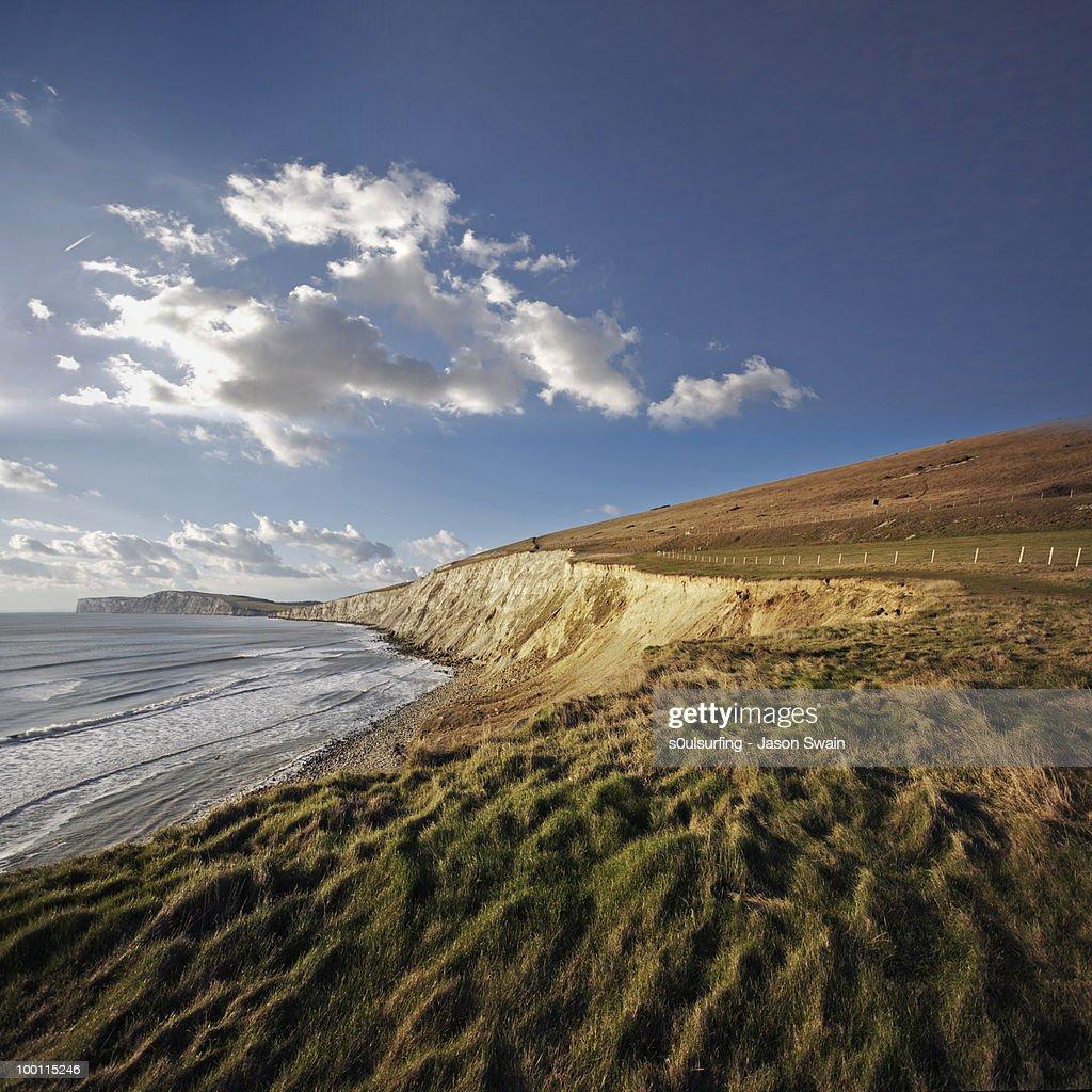 Coastal Remedy : Stock Photo