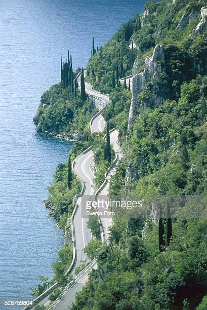 coastal road at the lake garda, italy - italian cypress stock photos and pictures