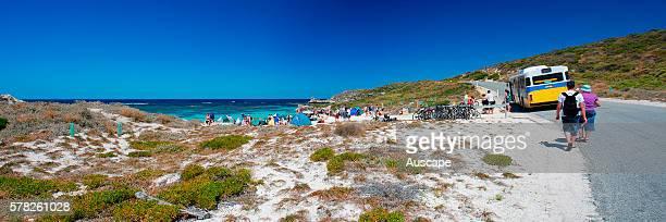 Coastal road Rottnest Island Western Australia Australia