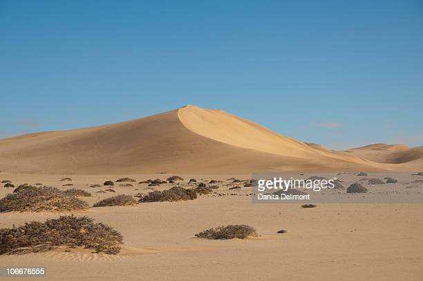 coastal sand dunes between walvis bay and swakopmund, famous dune 7, walvis bay, namib desert, namibia - walvis bay stock photos and pictures