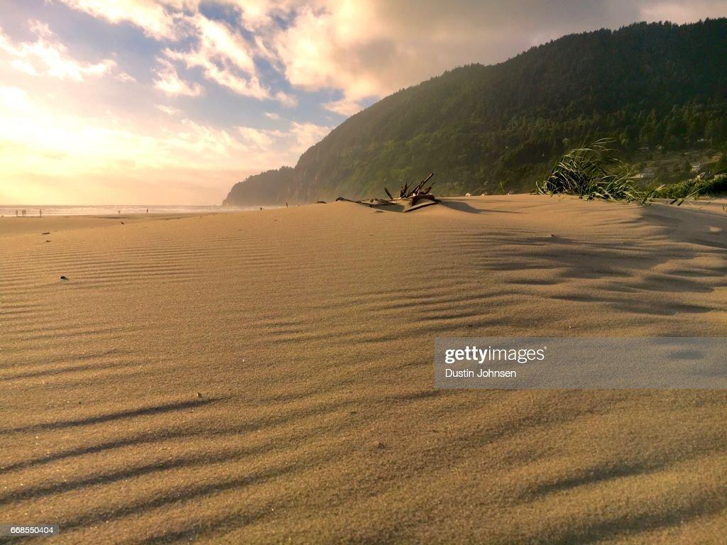 Coastal Sand Formations at Sunset : Stock Photo