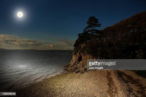 Coastal scene by moonlight