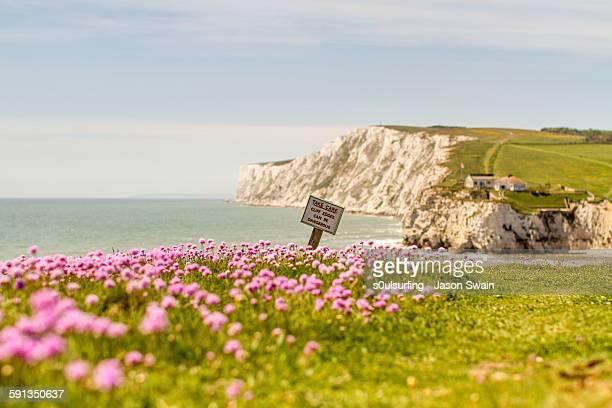 Coastal scene, Isle of Wight