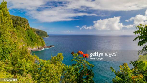 coastal scenery beside the road to hana,maui,hawaii,usa - マウイ島 ストックフォトと画像