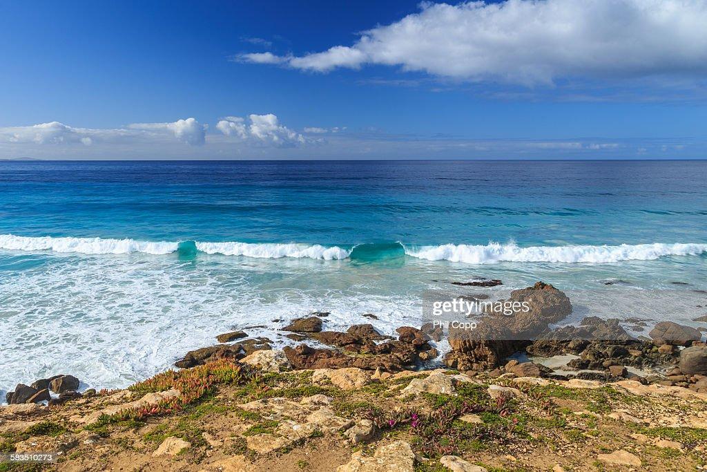 Coastal Surf : Stock Photo