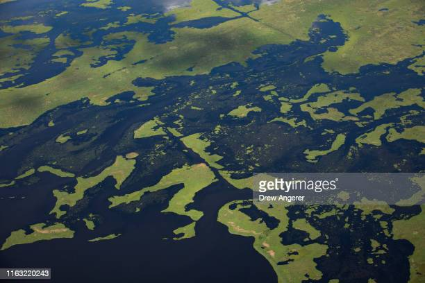 Coastal waters flow through deteriorating wetlands on August 22 2019 in Plaquemines Parish Louisiana The nonprofit conservation organization...