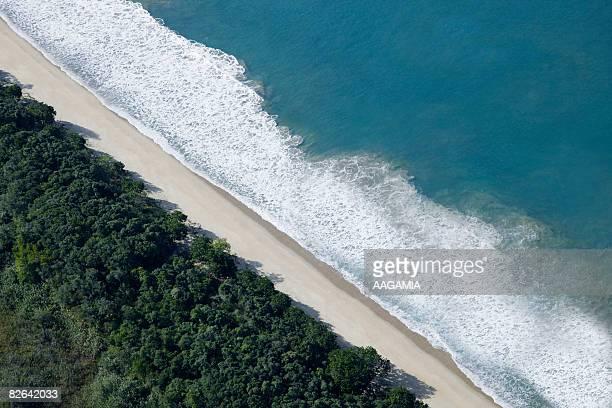 Coastline, aerial view