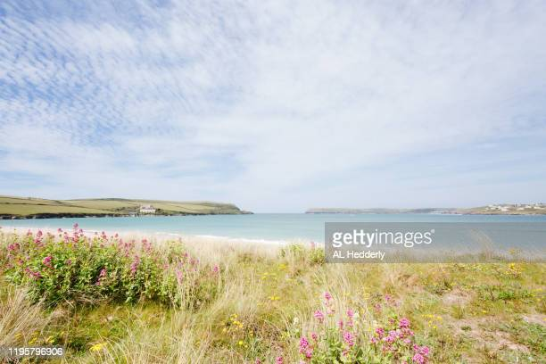 coastline around tregirls beach - flowing cape stock pictures, royalty-free photos & images