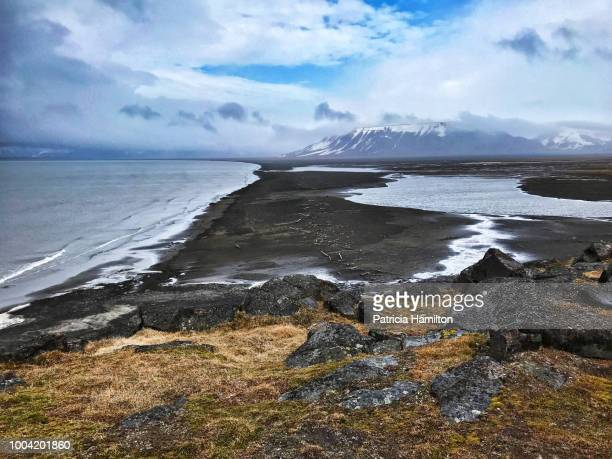 coastline at russebukta, spitsbergen at low tide. - permafrost stock pictures, royalty-free photos & images
