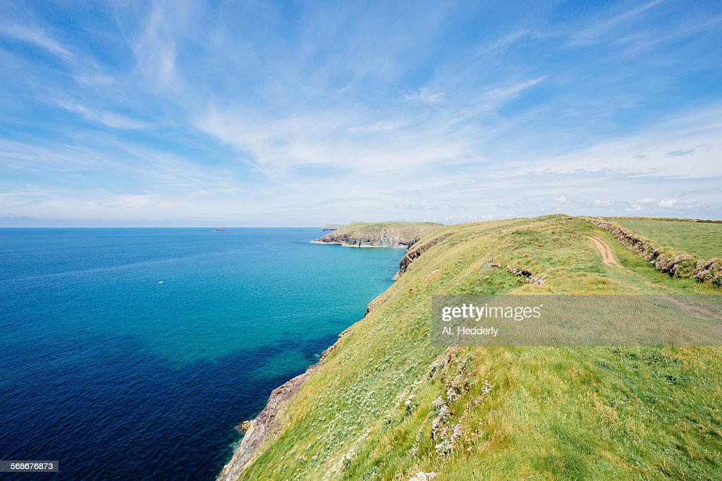 Coastline between Gunver Head and Stepper Point : Stock Photo
