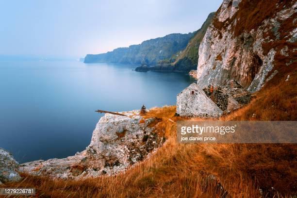 coastline, bushmills, county antrim, northern ireland - ireland stock pictures, royalty-free photos & images