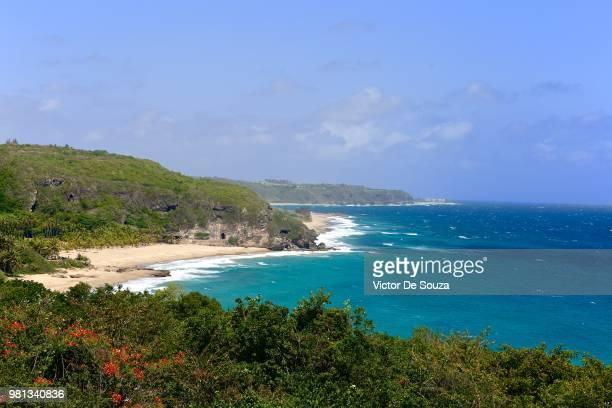 coastline by caribbean sea, merendero guajataca, guajataca tunnel, puerto rico - paisajes de puerto rico fotografías e imágenes de stock