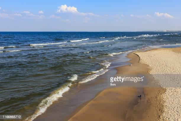 coastline in zinnowitz (usedom/ mecklenburg-vorpommern germany) - ツィノヴィッツ ストックフォトと画像