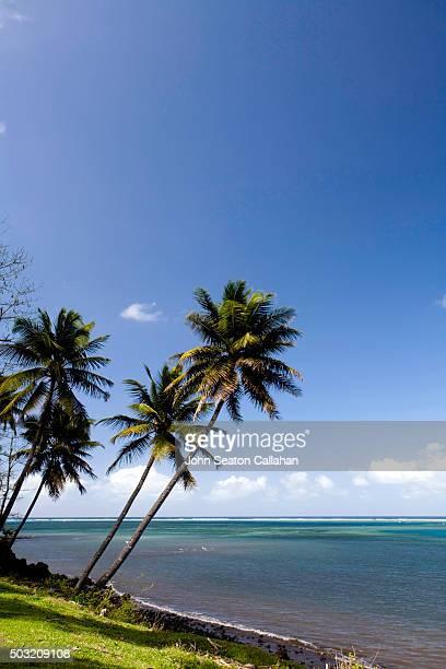 Coastline of Anjouan Island