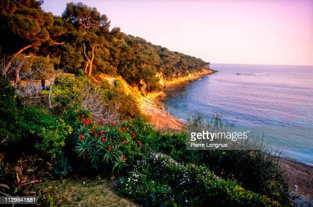 coastline of the peninsula of saint-jean-cap-ferrat - saint jean cap ferrat stock pictures, royalty-free photos & images