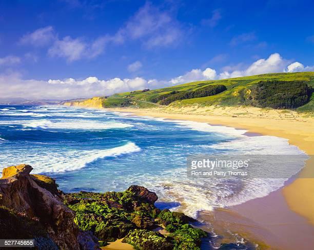 coastline pescadero state beach,carmel,pacific ocean,ca(p) - carmel california stock photos and pictures
