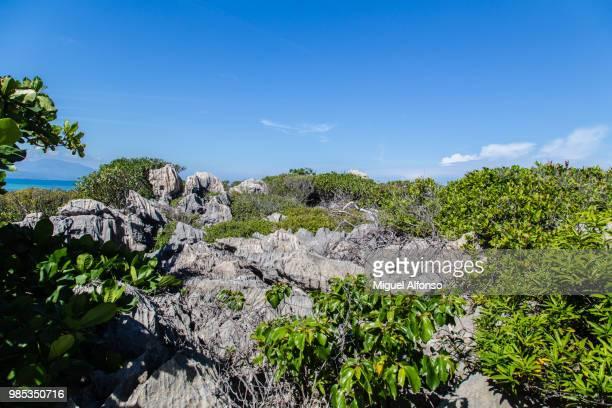 coastline - paisajes de haiti fotografías e imágenes de stock