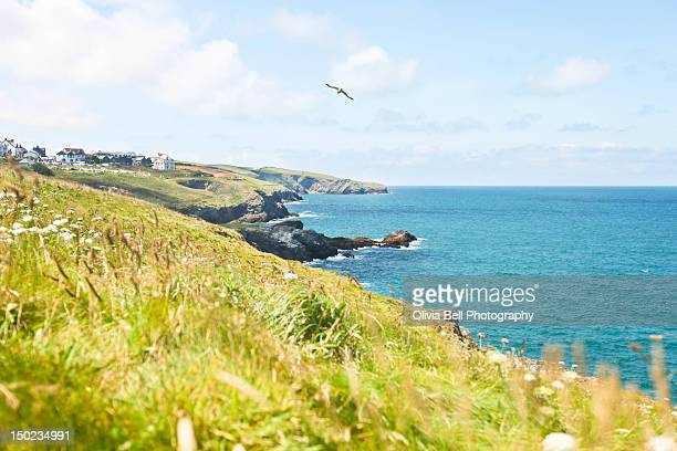 coastline port - port isaac stock pictures, royalty-free photos & images