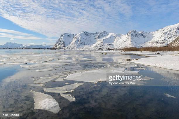 "coastline view in the lofoten during winter - ""sjoerd van der wal"" stock pictures, royalty-free photos & images"