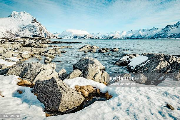 "coastline view in the lofoten during winter - ""sjoerd van der wal"" stock pictures, royalty-free photos & images"