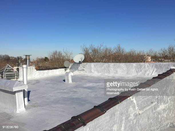 a coated roof on a residential building in brooklyn nyc - membrane stock photos and pictures