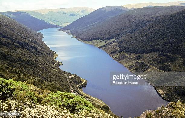 Cobb Reservoir from above dam U shaped glaciated valley with lake level raised by hydro dam Evergreen beech Nothofagus sp foreSt Post glacial north...