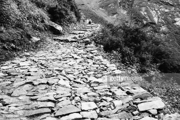 Cobbled path Valley of Flowers Hemkund Ghangaria, Garhwal, Uttarakhand, India, Asia, 1978
