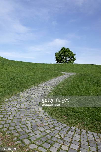 cobbled stone path with lonly tree on a slope - sebastian grey stock pictures, royalty-free photos & images
