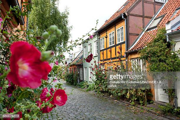 Cobbled street with historic houses in the old town, Aarhus, Denmark