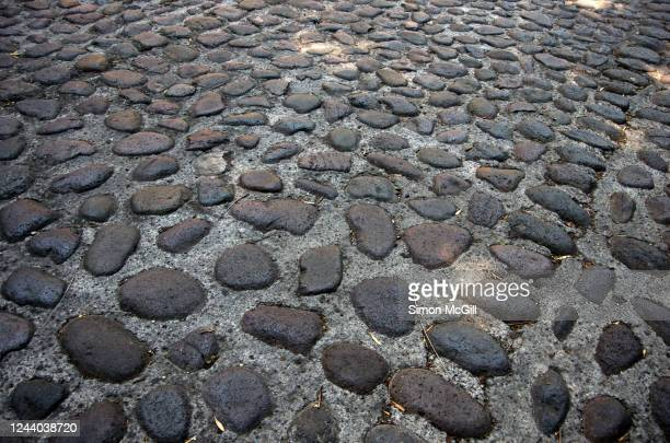 cobblestone street in coyoacán, mexico city, mexico - cobblestone stock pictures, royalty-free photos & images