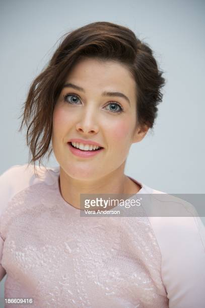 Cobie Smulders at the 'Delivery Man' Press Conference at the Four Seasons Hotel on November 1 2013 in Beverly Hills City