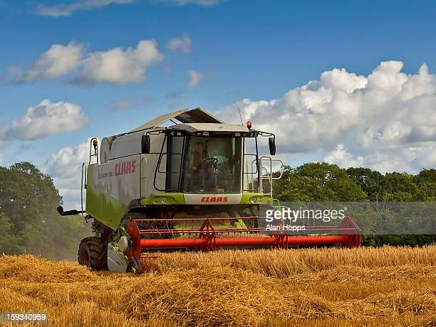 Cobining spring barley near Richhill, County Armagh, Northern Ireland on 19/9/12.