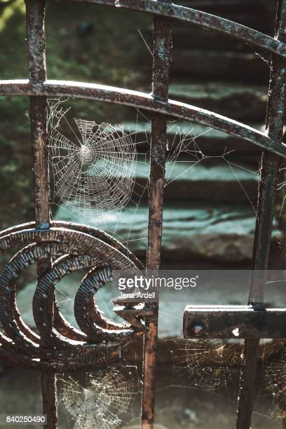 cobwebs haunted house - salem massachusetts stock pictures, royalty-free photos & images