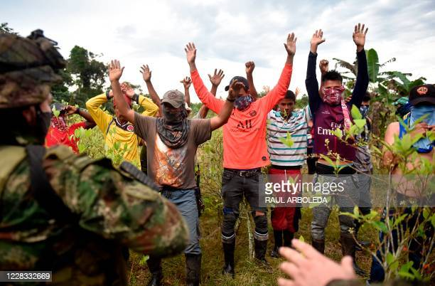 Coca growers raise their hands in protest against the eradication of illicit crops ordered by the Colombian government as soldiers carry out the...