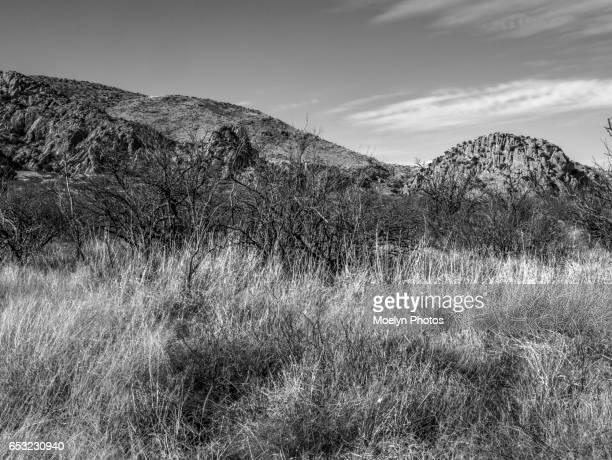 Cochise Stronghold-Coronado National Forest bandw